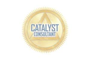 CATALYST CONSULTANT GRAY