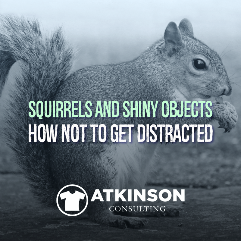 Squirrels & Shiny Objects How Not To Get Distracted